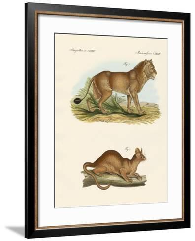 New Predatory Mammals--Framed Art Print