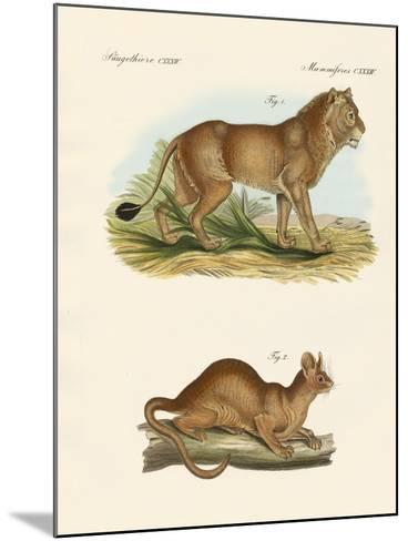 New Predatory Mammals--Mounted Giclee Print