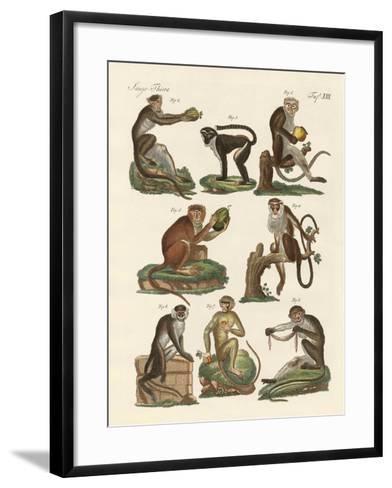 Eight Kinds of Guenon--Framed Art Print