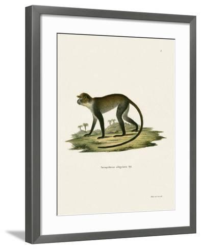 White-Throated Monkey--Framed Art Print