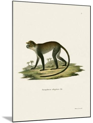 White-Throated Monkey--Mounted Giclee Print
