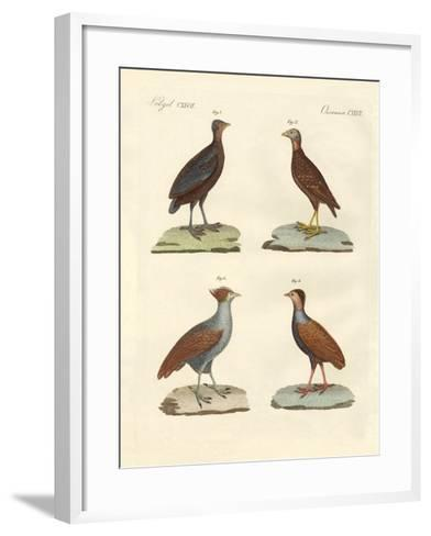 Strange Hen-Like Birks--Framed Art Print