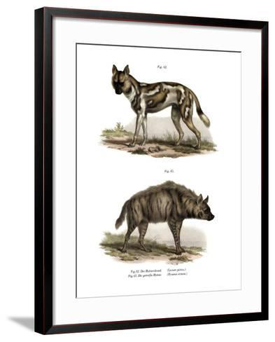 African Wild Dog, 1860--Framed Art Print