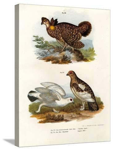 Pinnated Grouse, 1864--Stretched Canvas Print