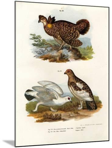 Pinnated Grouse, 1864--Mounted Giclee Print