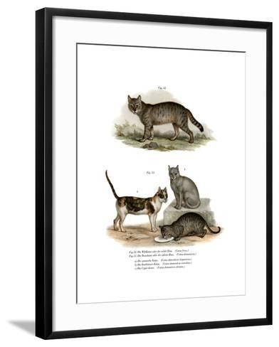 Wildcat, 1860--Framed Art Print
