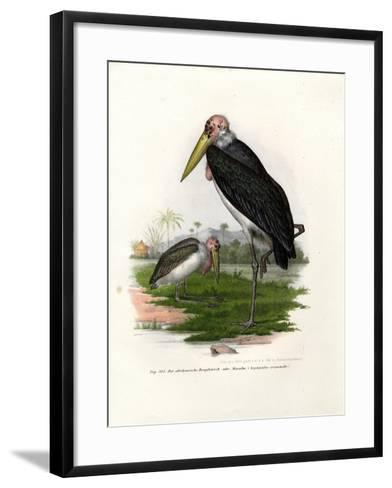 Marabou, 1864--Framed Art Print