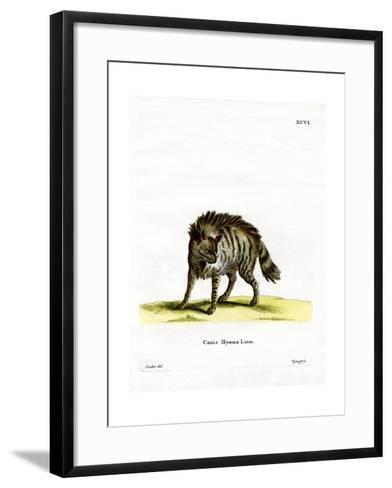 Striped Hyena--Framed Art Print