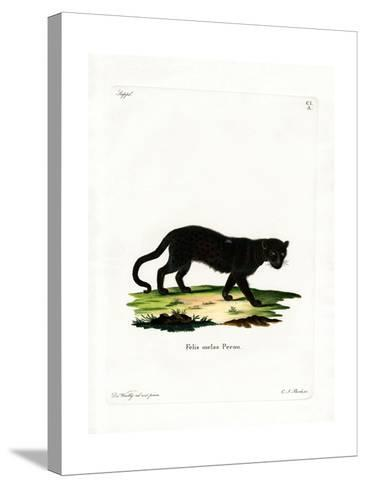 Black Leopard--Stretched Canvas Print