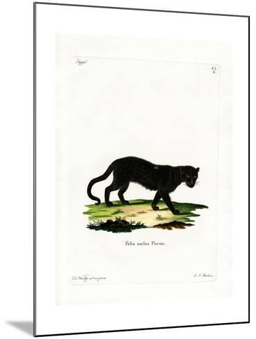 Black Leopard--Mounted Giclee Print