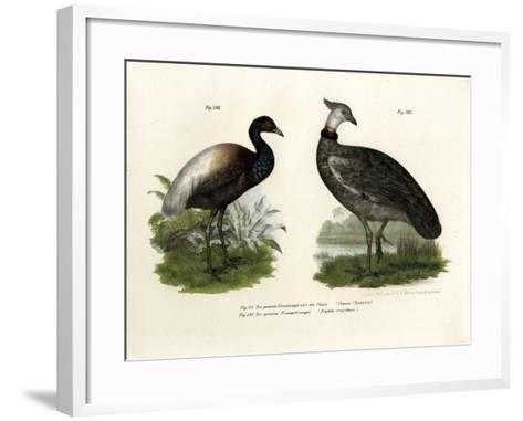 Chaja Bird, 1864--Framed Art Print
