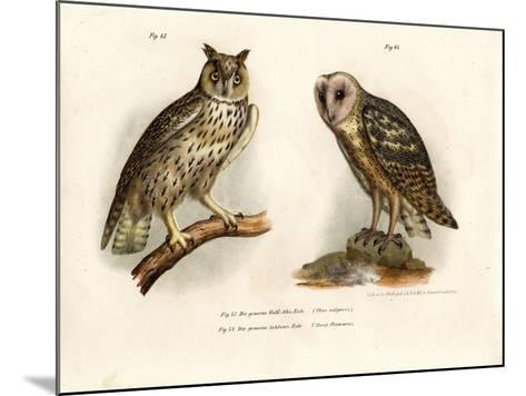Horned Owl, 1864--Mounted Giclee Print