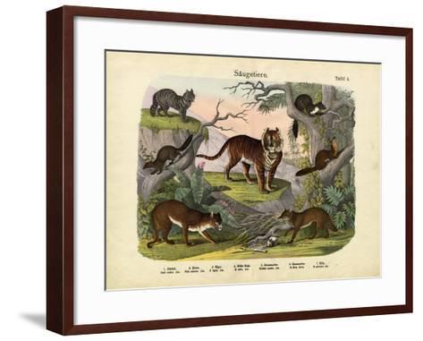 Mammals, C.1860--Framed Art Print
