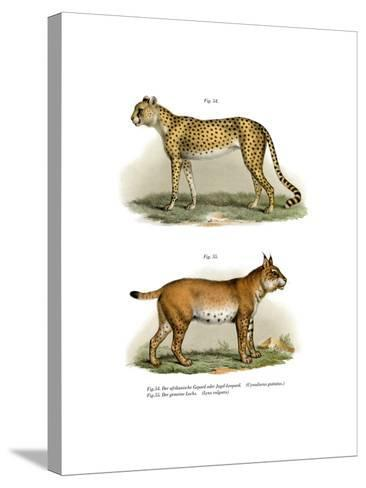 Gepard, 1860--Stretched Canvas Print