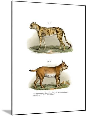 Gepard, 1860--Mounted Giclee Print
