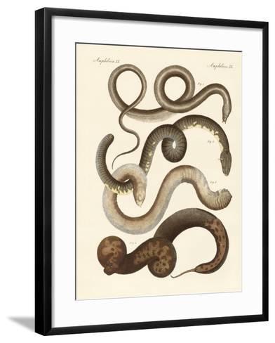 Strange Snake--Framed Art Print