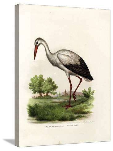White Stork, 1864--Stretched Canvas Print