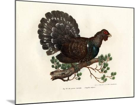Wood Grouse, 1864--Mounted Giclee Print