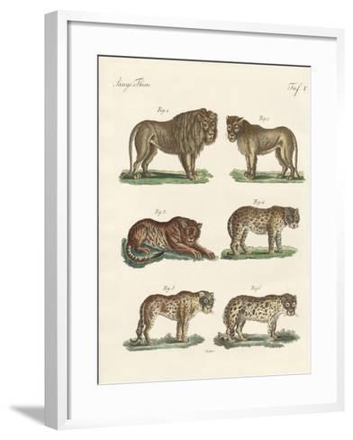 Biting Animals--Framed Art Print