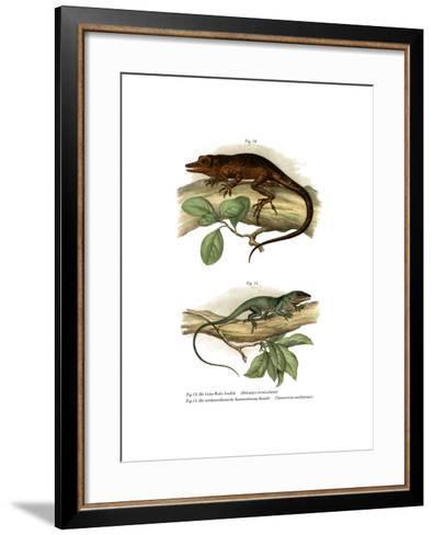 Vinales Anole--Framed Art Print