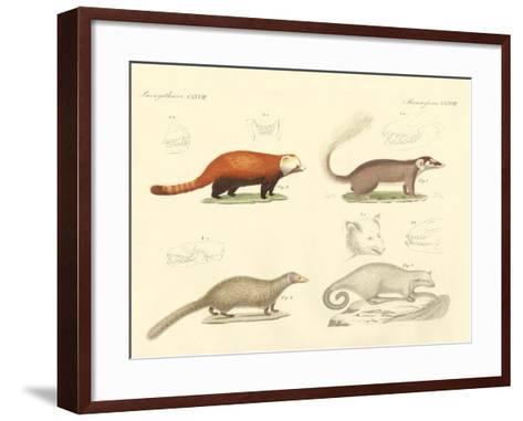Strange Mammals--Framed Art Print