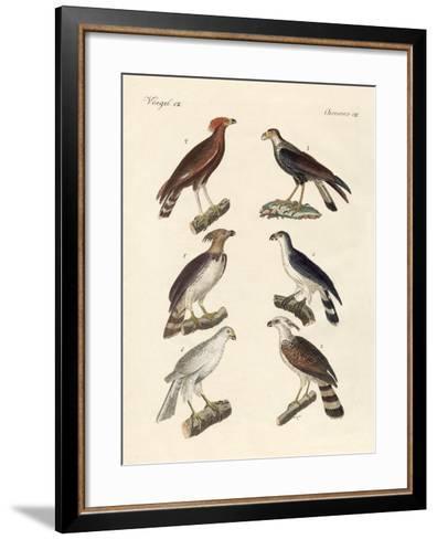 Strange Eagles--Framed Art Print