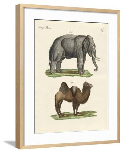 Four-Footed Animals--Framed Art Print