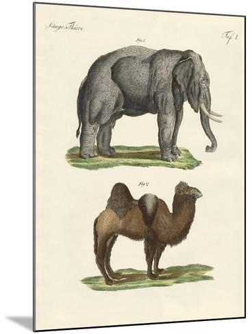 Four-Footed Animals--Mounted Giclee Print