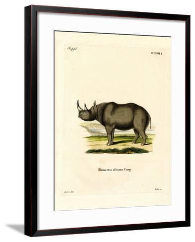Black Rhinoceros--Framed Art Print