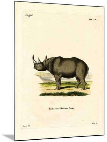 Black Rhinoceros--Mounted Giclee Print
