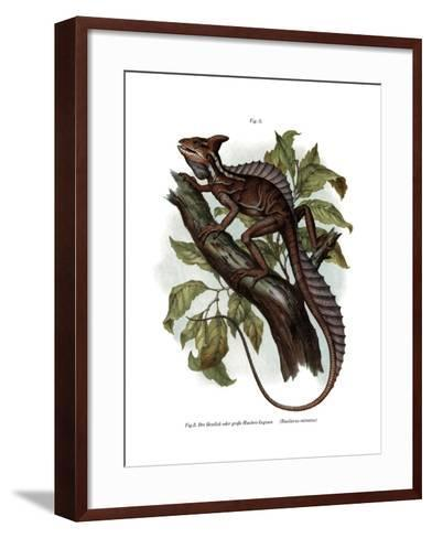 Common Basilisk--Framed Art Print