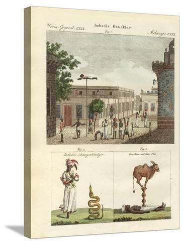 Indian Bateleurs--Stretched Canvas Print