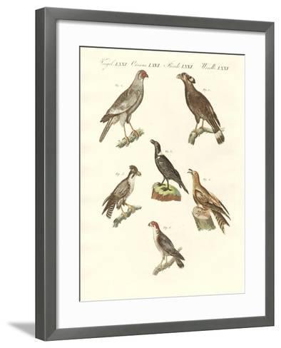 African Birds--Framed Art Print