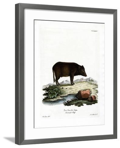 Siamese Wild Boar--Framed Art Print