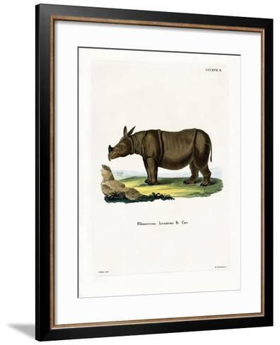 Javan Rhinoceros--Framed Art Print