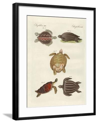 Strange Sea-Turtles--Framed Art Print
