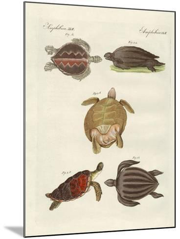 Strange Sea-Turtles--Mounted Giclee Print