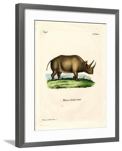 African Rhinoceros--Framed Art Print