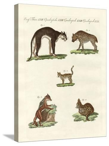 Rapacious Animals--Stretched Canvas Print
