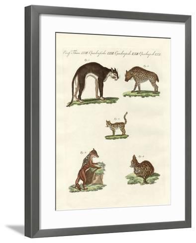 Rapacious Animals--Framed Art Print