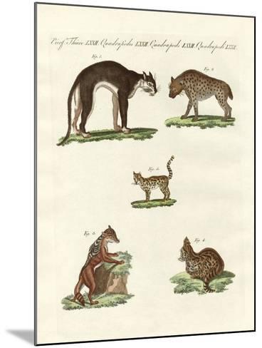 Rapacious Animals--Mounted Giclee Print