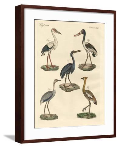 Strange Birds--Framed Art Print