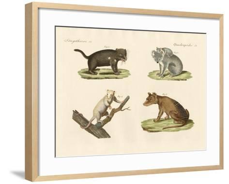 Strange Marsupials--Framed Art Print