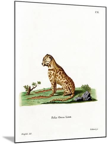 Jaguar--Mounted Giclee Print