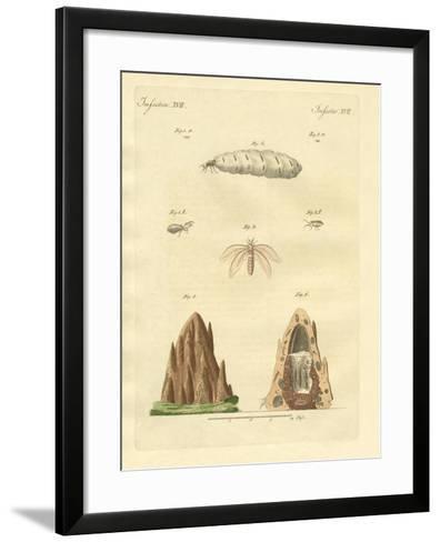 The Termites--Framed Art Print