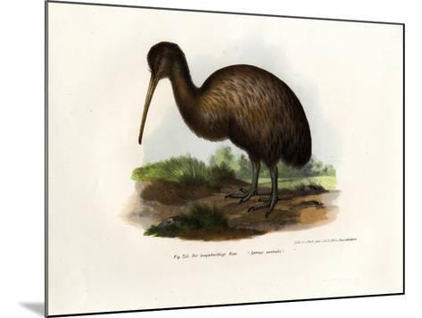Kiwi, 1864--Mounted Giclee Print