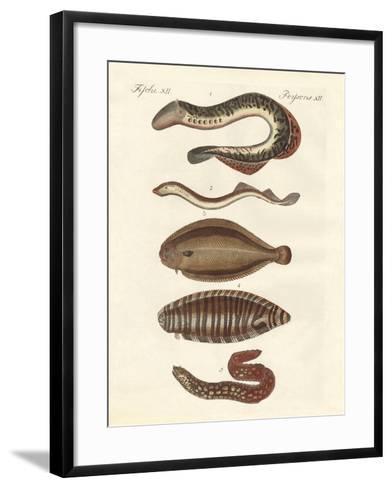 Tasty Fish--Framed Art Print