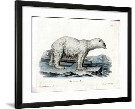 Polar Bear--Framed Art Print