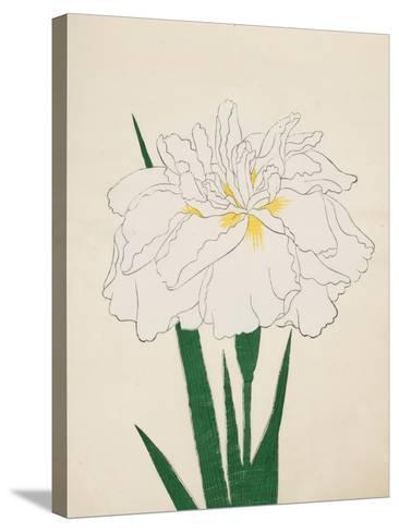 Ujaku-No-Nagisa, No. 61, 1890--Stretched Canvas Print