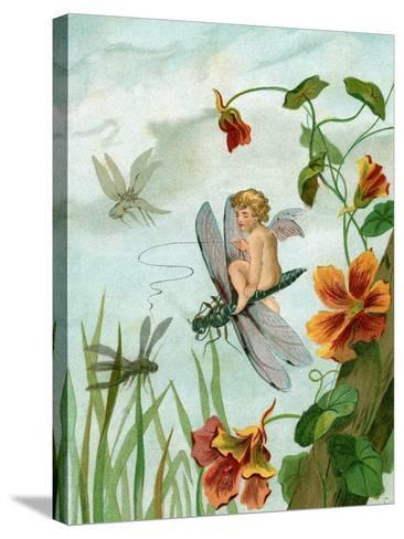 Winged Fairy Riding a Dragonfly Near Nasturtium Flowers, 1882--Stretched Canvas Print